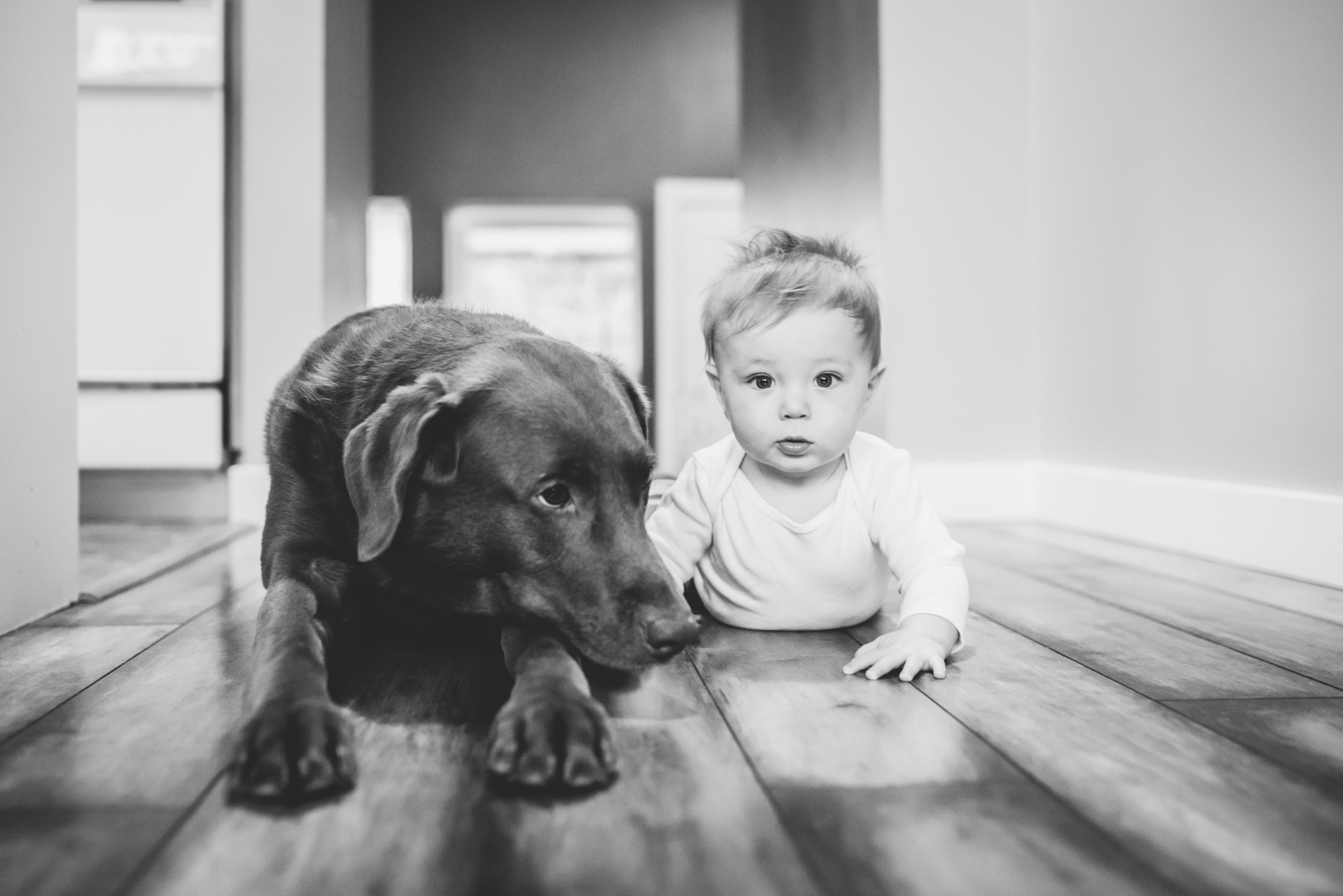 baby-puppy-portrait