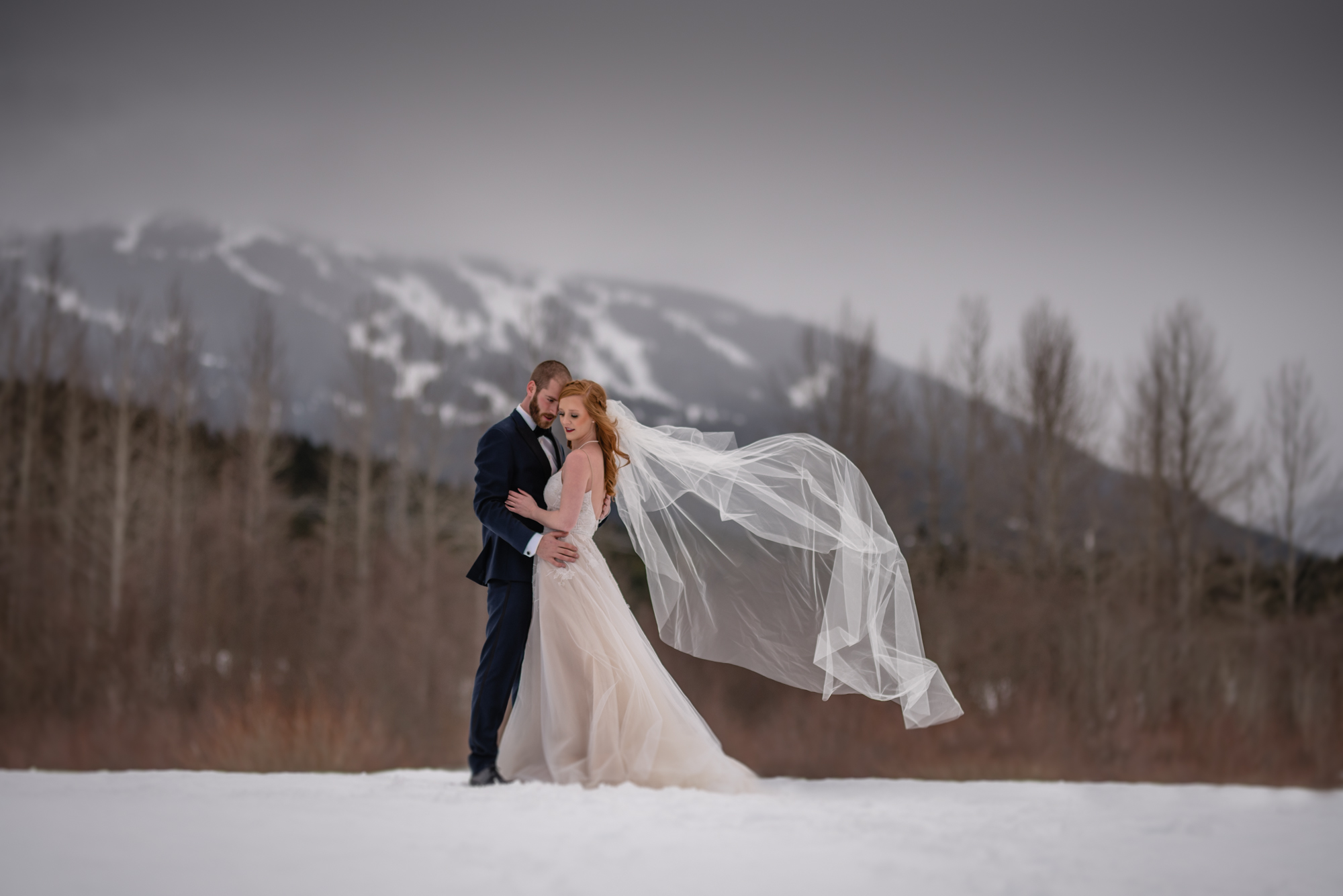 whistler wedding winter bride and groom portrait